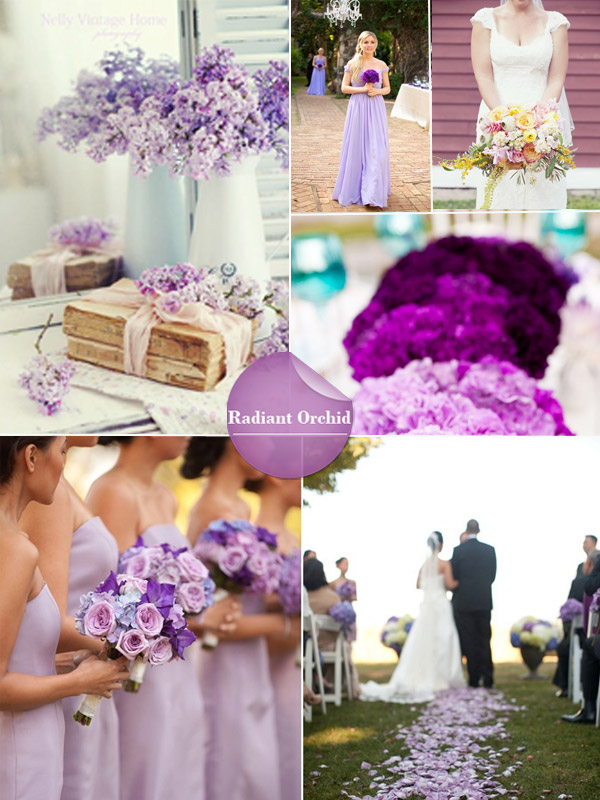 radiant-orchaid-spring-2014-wedding-color