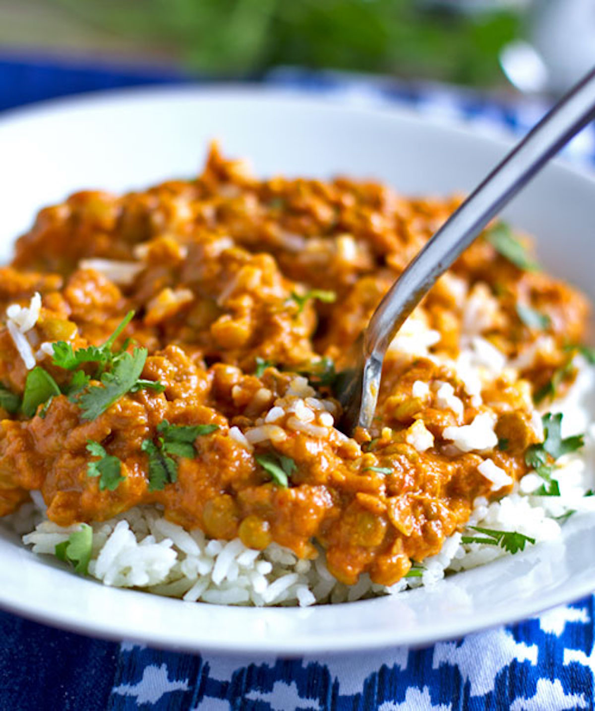 red-curry-lentils1