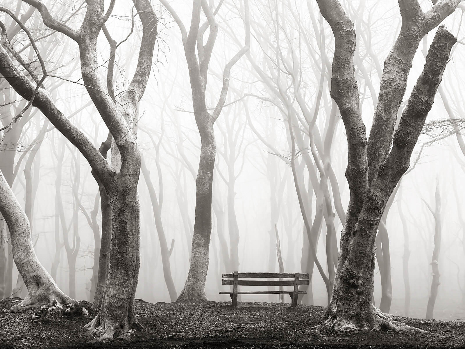 a-misty-view-monochrome-edit-2017